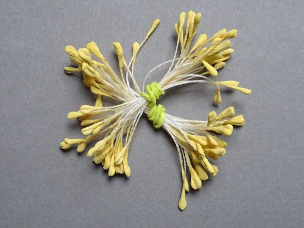 pistils grains jaunes